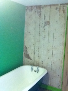 shower wall before