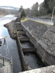 Lower half of the fish ladder