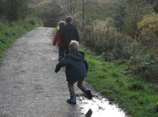 ... enjoy a walk in the woods.