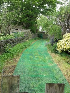 Lane with grass protector.