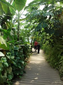 Exploring the Eden Project
